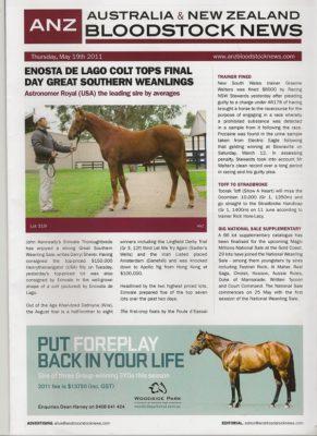 馬のセリの新聞のコピー