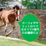 【シロクマ式競馬コラム】母系から見るゴーフォザサミットのG1級能力
